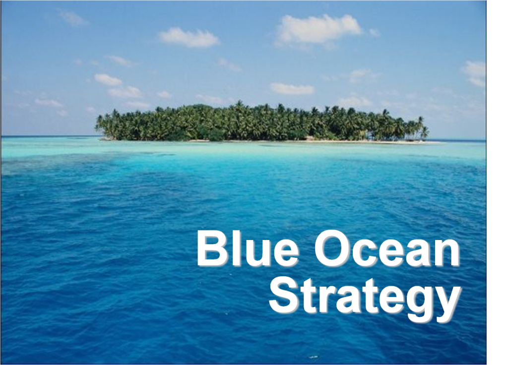 blue ocean strategy from theory to practice pdf